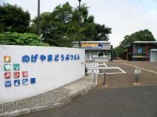 無料の野毛山動物園をはじめ、横浜市の動物園が充実している理由とは?