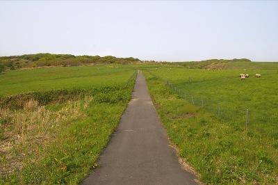 【僕らの島生活】北海道天売島・焼尻島