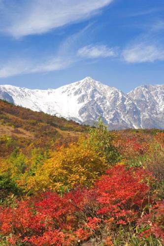 日本の秋「北アルプスと八方尾根」 日本の秋「北アルプスと八方尾根」 (gooニュース) 2006