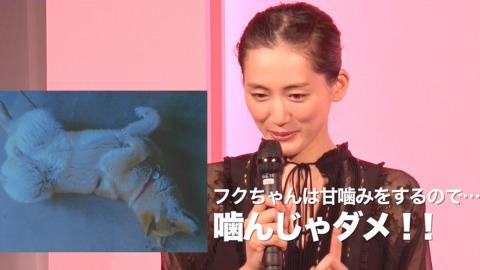 綾瀬はるか、甘噛みする飼い犬に「噛んじゃダメ!」