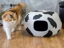 牛柄の猫かまくら