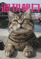 週刊朝日の「猫特集」