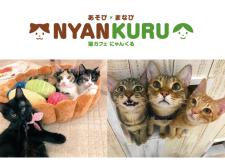 猫カフェにゃんくる mozoワンダーシティ店