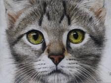 超リアルな猫のクレヨン画展