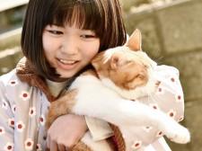 映画「トラさん〜僕が猫になったワケ〜」