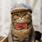 猫を熟知したいなら行くしかニャい…ねこの万博「にゃんぱく」が12月に開催!展示作品や出展者も募集中