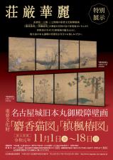 名古屋城で麝香猫図(じゃこうねこず)の展示