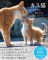 猫のラブラブな姿に癒やされるニャ〜♪ 島猫の愛情表現ばかりを収録した写真集「キス猫」