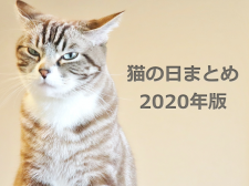猫の日まとめ【2020年版】