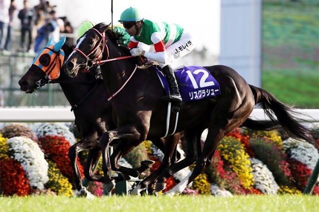 【香港ヴァーズ見どころ】欧州勢優位もエリ女ワンツー牝馬が参戦