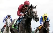 今年の欧州年度代表馬に選出されたロアリングライオン。(Photo by Getty Images)