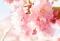 (速報)東京で3月17日に桜開花、観測史上3番目の早さ。東京の桜はなぜこれほど早く開花したのか?