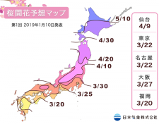 2019年第1回桜開花予想マップ