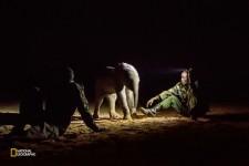 井戸から救出した子ゾウ。母親や群れが戻ってくるのを願って保護施設のスタッフが付き添った。(Photograph by Ami Vitale, National Geographic)