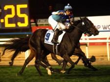 ドバイターフを制したヴィブロス。鞍上は「マジックマン」ことジョアン・モレイラ騎手