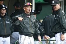 阪神の監督に就任して2年目を迎えた金本知憲監督