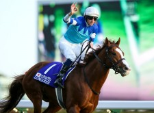 シュヴァルグランはジャパンC勝利の勢いで、有馬記念も制するか