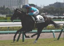ミルコ・デムーロ騎手を背に新馬戦を快勝したグローリーヴェイズ