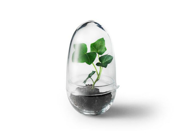 DESIGN HOUSE STOCKHOLM / デザインハウスストックホルムGrow greenhouse Clear glass