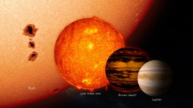 太陽、低質量星、褐色矮星、木星の大きさ比較