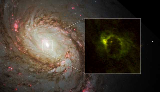 M77の中央部と銀河中心に位置する超大質量ブラックホールを取り巻くガスの分布