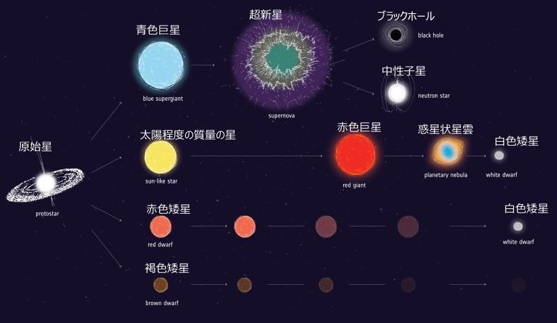 質量に応じた星の進化を示すイラスト