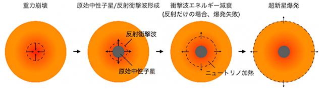 重力崩壊型超新星の爆発メカニズム