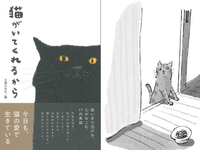 ネコの数だけ物語がある、17の実話エピソードを収録した書籍「猫がいてくれるから」