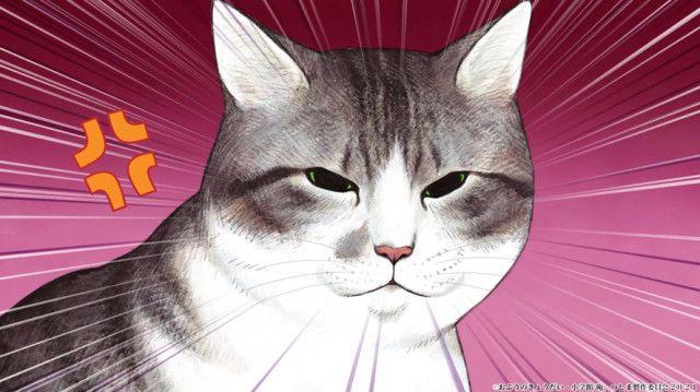 エンタメ/TVアニメ「俺、つしま」のYouTube配信が決定、作品の秘密が詰まったファンブックも発売(Cat Press)