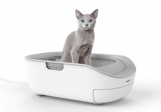 猫が使わなかったら全額返金ニャ!シャープのスマート猫トイレがお試しプログラムを提供開始