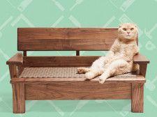 ネコ家具が当たるキャンペーン