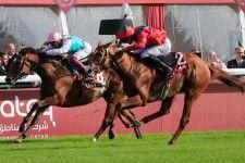 昨年はヴァルトガイストに阻まれ3連覇を逃したエネイブル(左)。(Photo by Press Association)