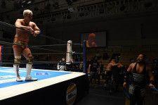 【新日本】シングル戦を熱望のオカダ「離れてしまったファンを、俺とEVILの戦いで引き戻そうぜ」