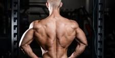 三角筋の増大を目指す、正しい肩の筋トレメニューの組立て方