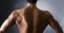 逆三角形ボディを手に入れる、背筋トレーニングメニューを徹底解剖