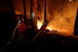 ポルトガルの山火事で27人死亡