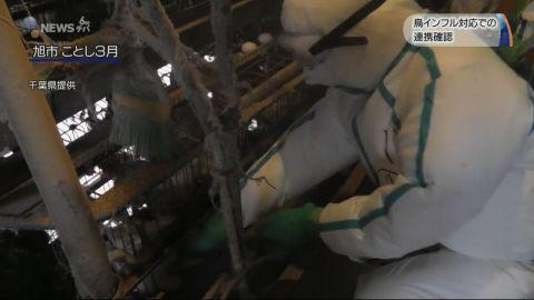 鳥インフルエンザ発生に備え 行政や自衛隊ら300人が訓練参加 /千葉市