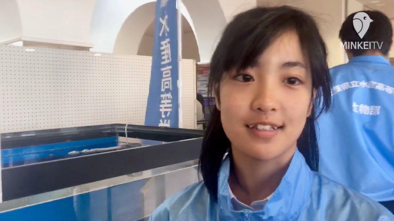 三重県立水産高校の生徒がおもしろ水槽