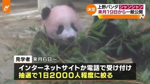 上野動物園「シャンシャン」、来月19日から一般公開