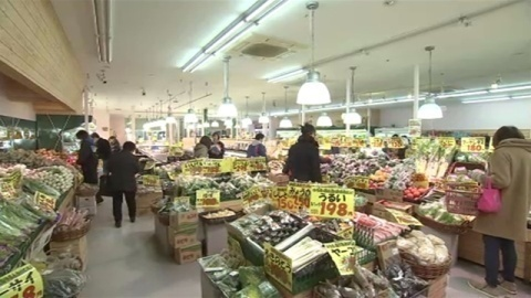 白菜・大根などの価格、平年の2倍以上高く