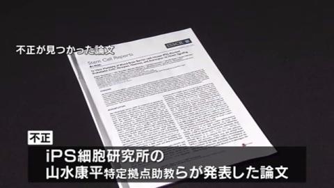 iPS論文に「ねつ造と改ざん」、京大が発表