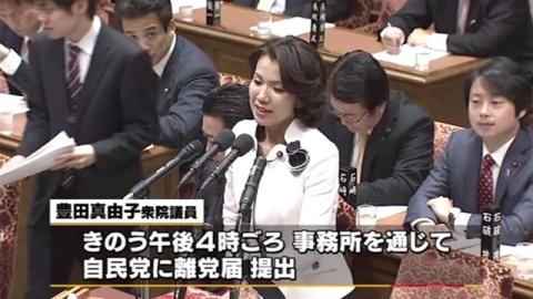 """自民・豊田議員が離党届 """"秘書への暴力・暴言""""報道"""